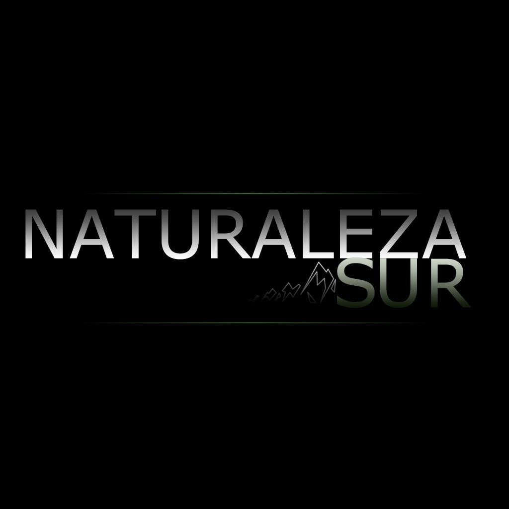 Logo-Naturaleza-Sur-Facundo-Vital